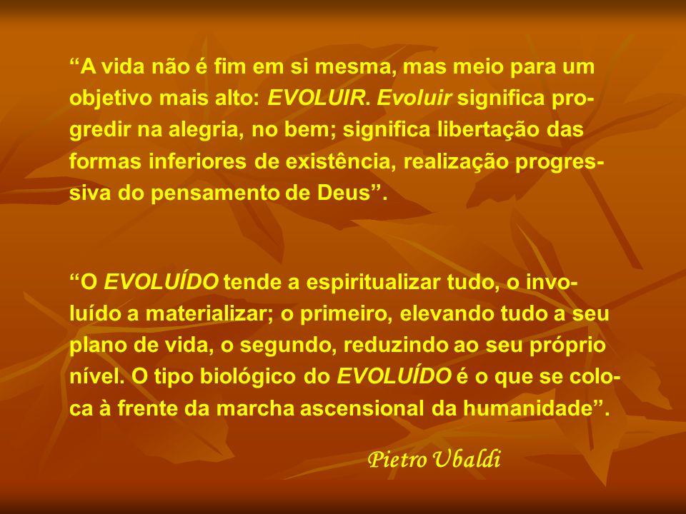 A vida não é fim em si mesma, mas meio para um objetivo mais alto: EVOLUIR.