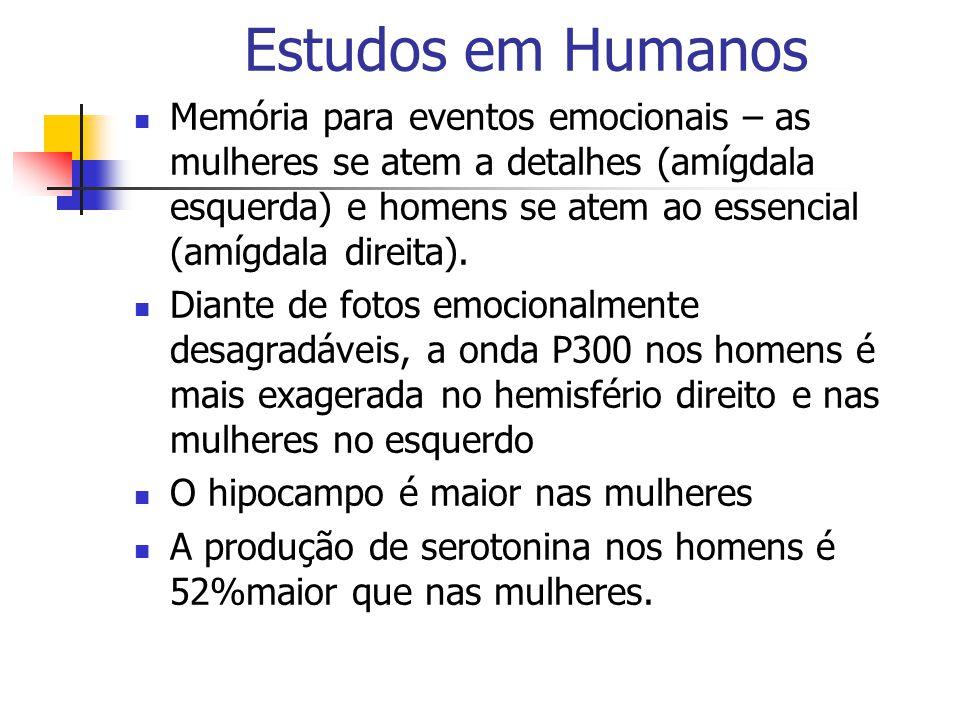 Estudos em Humanos Memória para eventos emocionais – as mulheres se atem a detalhes (amígdala esquerda) e homens se atem ao essencial (amígdala direit