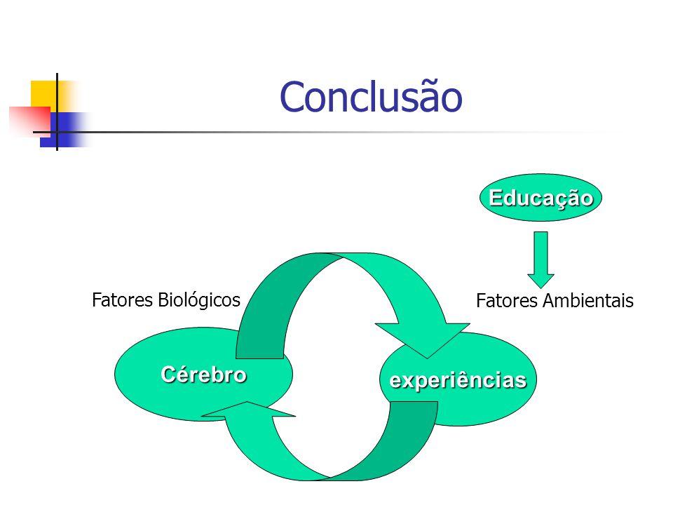 Conclusão Fatores Ambientais Cérebro experiências Educação Fatores Biológicos