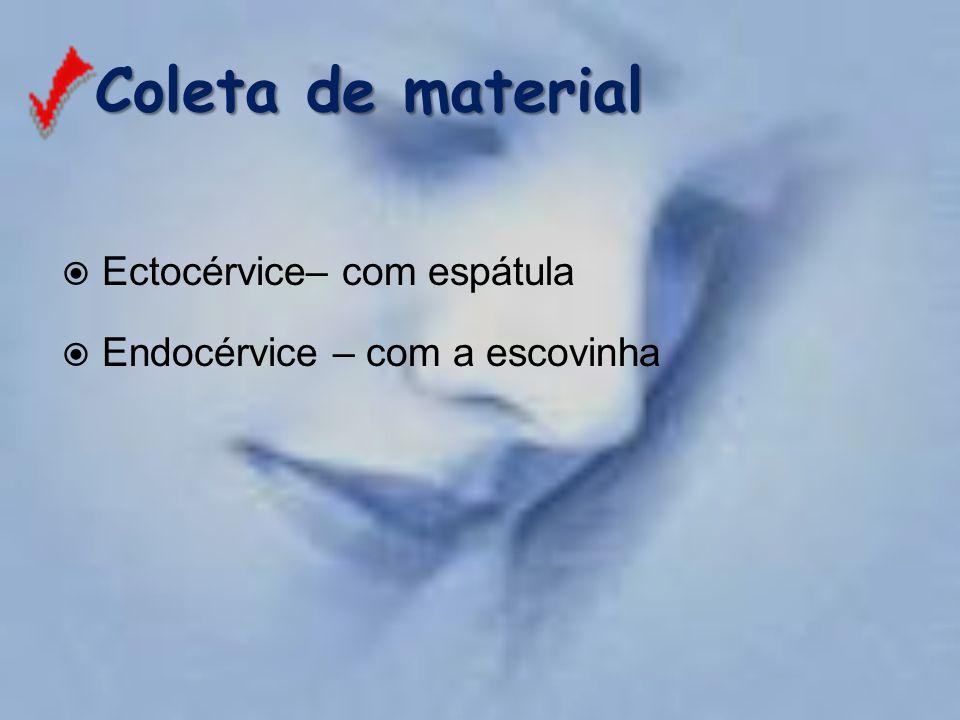 Coleta de material  Ectocérvice– com espátula  Endocérvice – com a escovinha