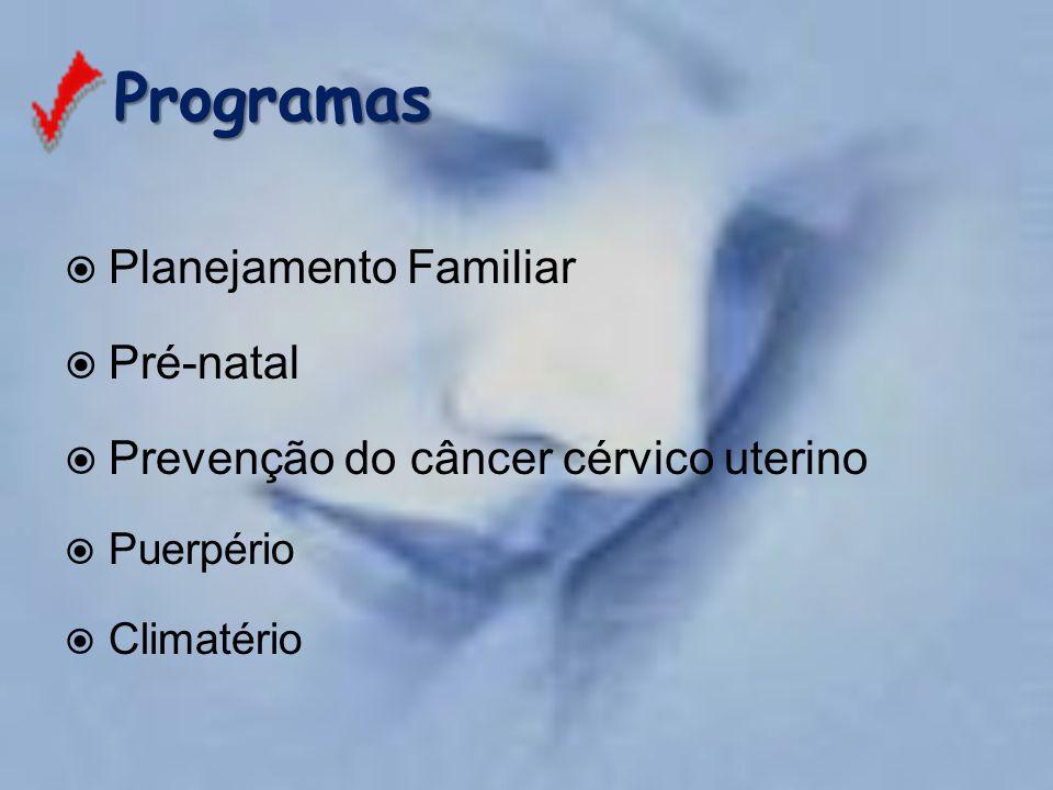 Programas Programas  Planejamento Familiar  Pré-natal  Prevenção do câncer cérvico uterino  Puerpério  Climatério