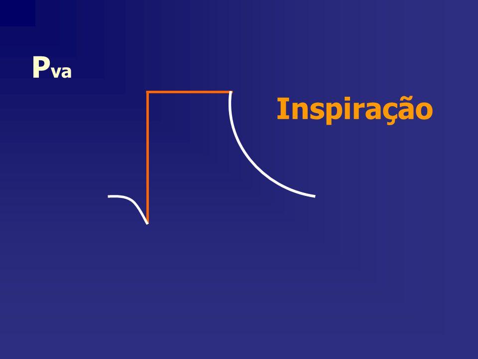 P va Inspiração