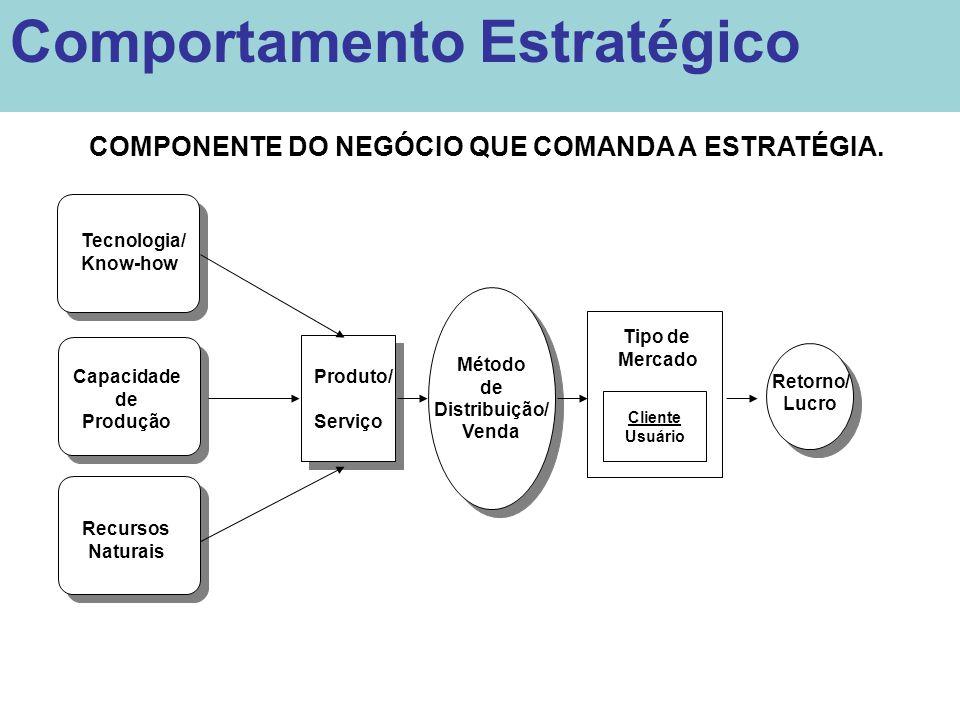 COMPONENTE DO NEGÓCIO QUE COMANDA A ESTRATÉGIA. Tecnologia/ Know-how Capacidade de Produção Produto/ Serviço Método de Distribuição/ Venda Método de D