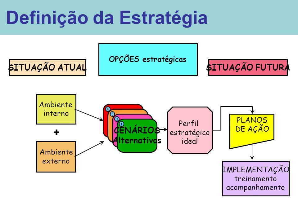 Ambiente interno Ambiente externo + OPÇÕES estratégicas C Perfil estratégico ideal PLANOS DE AÇÃO SITUAÇÃO ATUALSITUAÇÃO FUTURA IMPLEMENTAÇÃO treiname