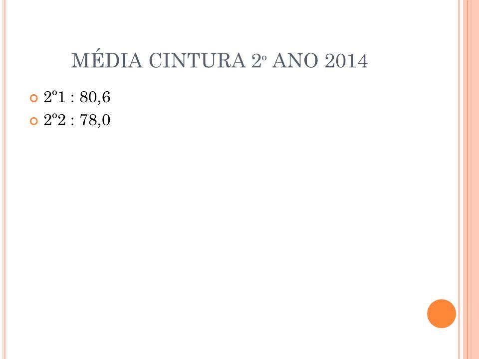MÉDIA CINTURA 2 º ANO 2014 2º1 : 80,6 2º2 : 78,0