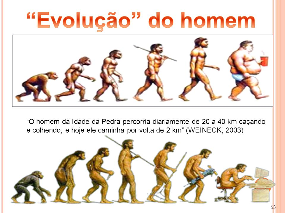 53 O homem da Idade da Pedra percorria diariamente de 20 a 40 km caçando e colhendo, e hoje ele caminha por volta de 2 km (WEINECK, 2003)