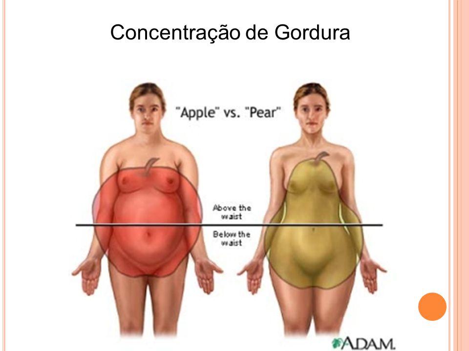 Concentração de Gordura
