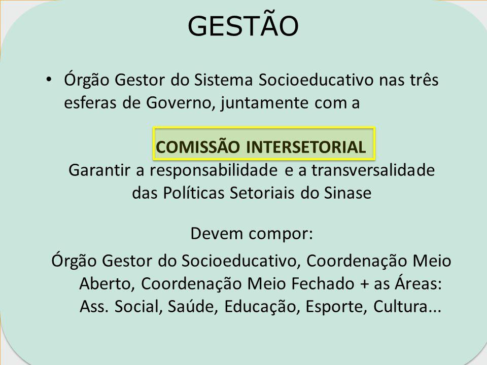 DESAFIOS Articulação e integração do Meio Aberto e Meio Fechado.