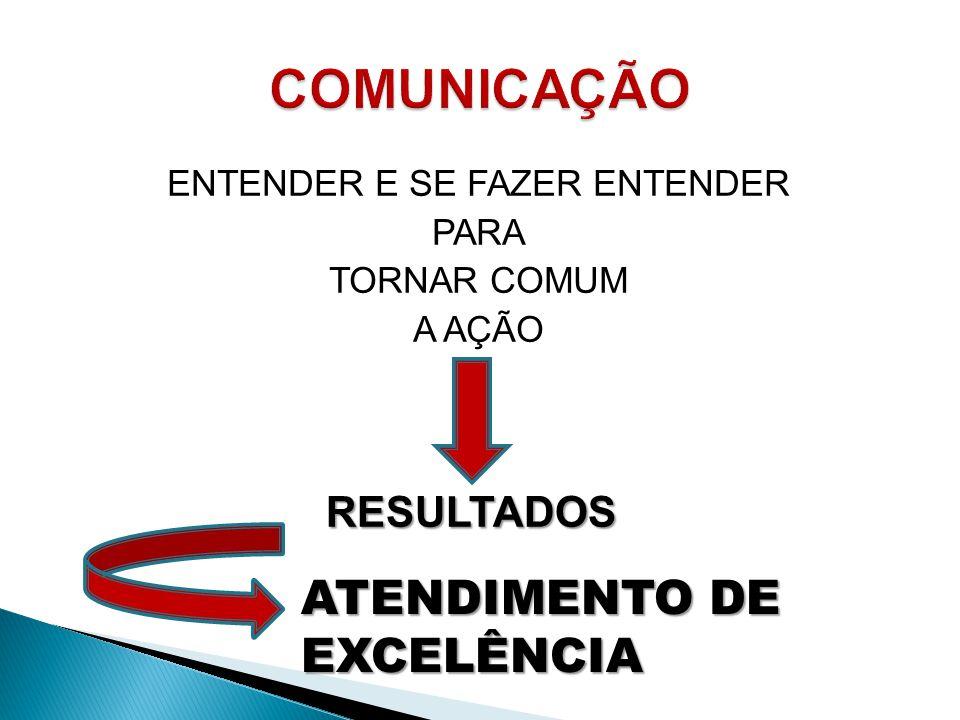 ENTENDER E SE FAZER ENTENDER PARA TORNAR COMUM A AÇÃO RESULTADOS ATENDIMENTO DE EXCELÊNCIA