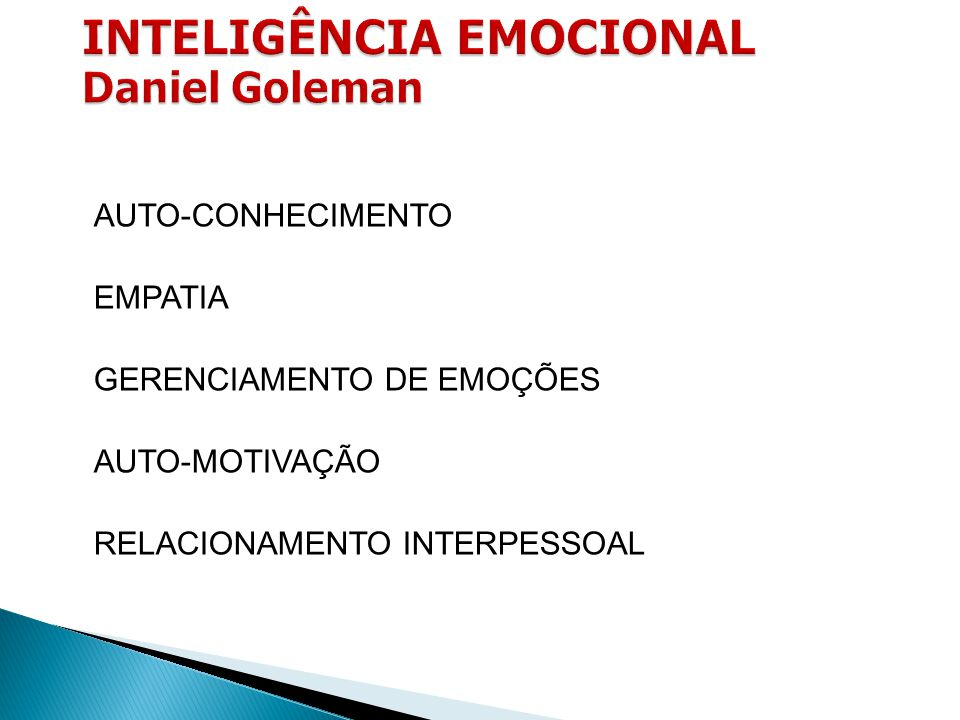 AUTO-CONHECIMENTO EMPATIA GERENCIAMENTO DE EMOÇÕES AUTO-MOTIVAÇÃO RELACIONAMENTO INTERPESSOAL