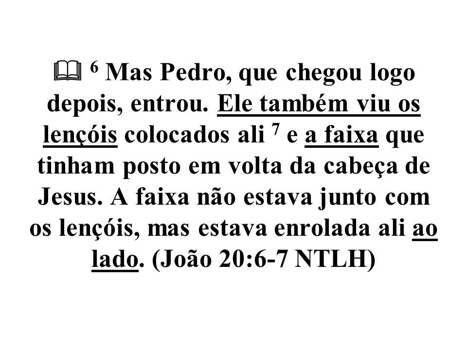  6 Mas Pedro, que chegou logo depois, entrou. Ele também viu os lençóis colocados ali 7 e a faixa que tinham posto em volta da cabeça de Jesus. A fai