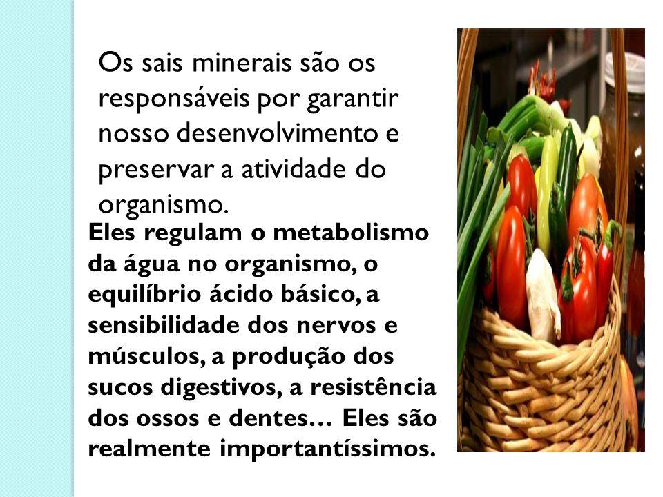 Os sais minerais são os responsáveis por garantir nosso desenvolvimento e preservar a atividade do organismo. Eles regulam o metabolismo da água no or