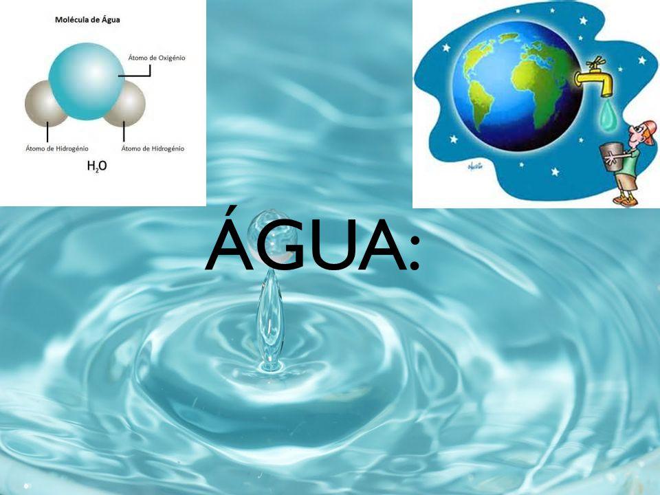ÁGUA: 70% da superfície terrestre 70% do corpo humano ÁGUA: