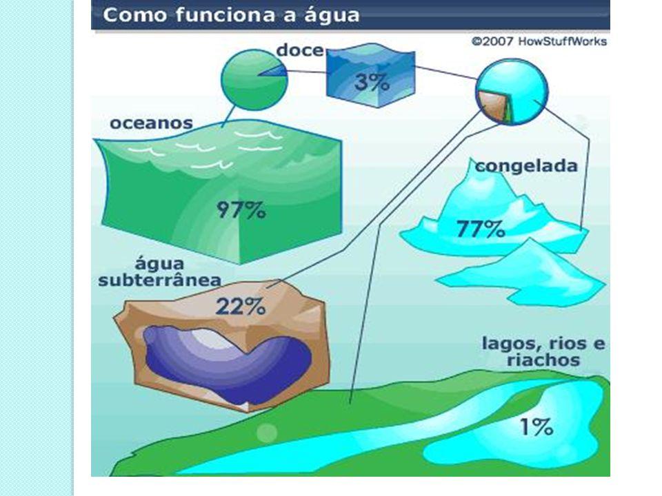A água como regulador térmico A água tem a capacidade de absorver e conservar calor.