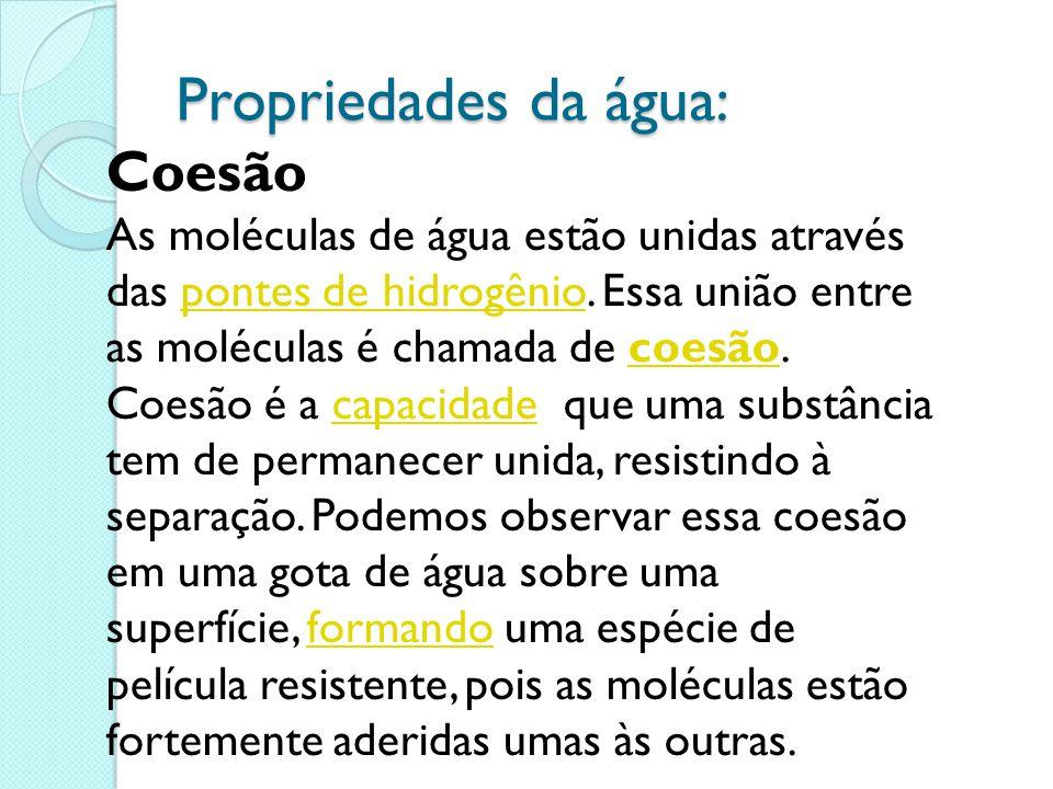Propriedades da água: Coesão As moléculas de água estão unidas através das pontes de hidrogênio. Essa união entre as moléculas é chamada de coesão.pon