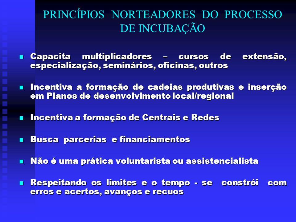 PRINCÍPIOS NORTEADORES DO PROCESSO DE INCUBAÇÃO Capacita multiplicadores – cursos de extensão, especialização, seminários, oficinas, outros Capacita m