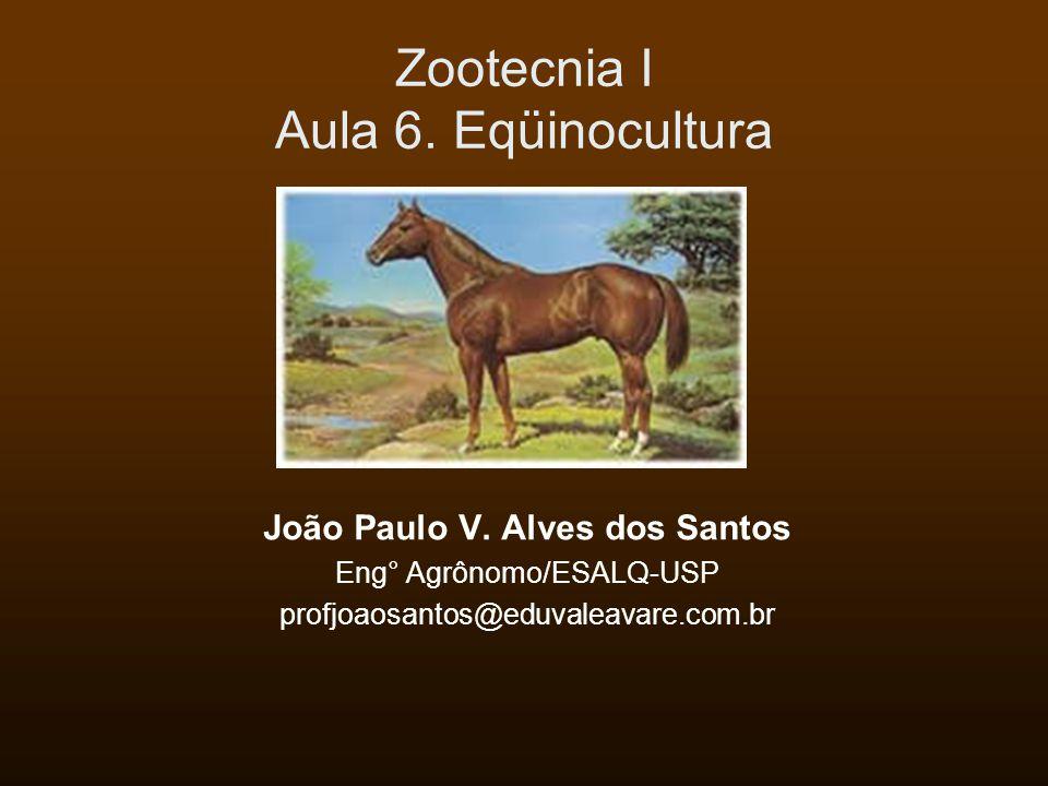 Zootecnia I Aula 6.Eqüinocultura João Paulo V.