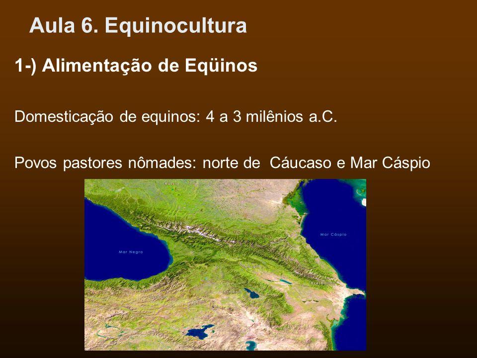 Aula 6.Equinocultura 1-) Alimentação de Eqüinos Domesticação de equinos: 4 a 3 milênios a.C.