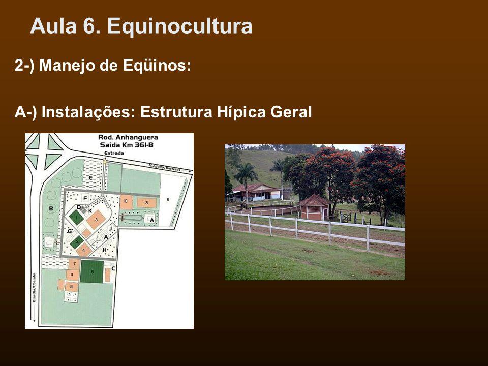 Aula 6. Equinocultura 2-) Manejo de Eqüinos: A-) Instalações: Estrutura Hípica Geral