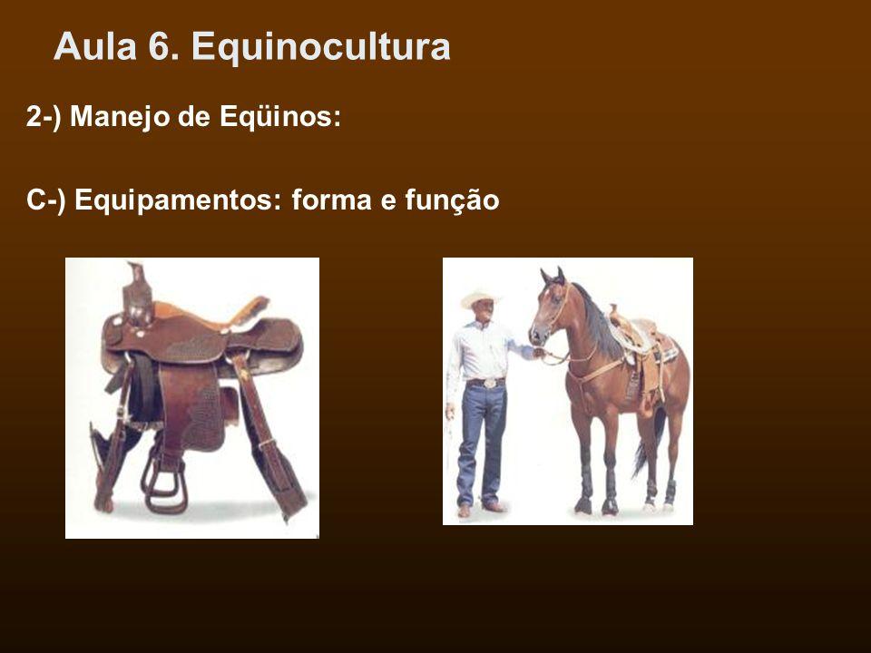 Aula 6. Equinocultura 2-) Manejo de Eqüinos: C-) Equipamentos: forma e função