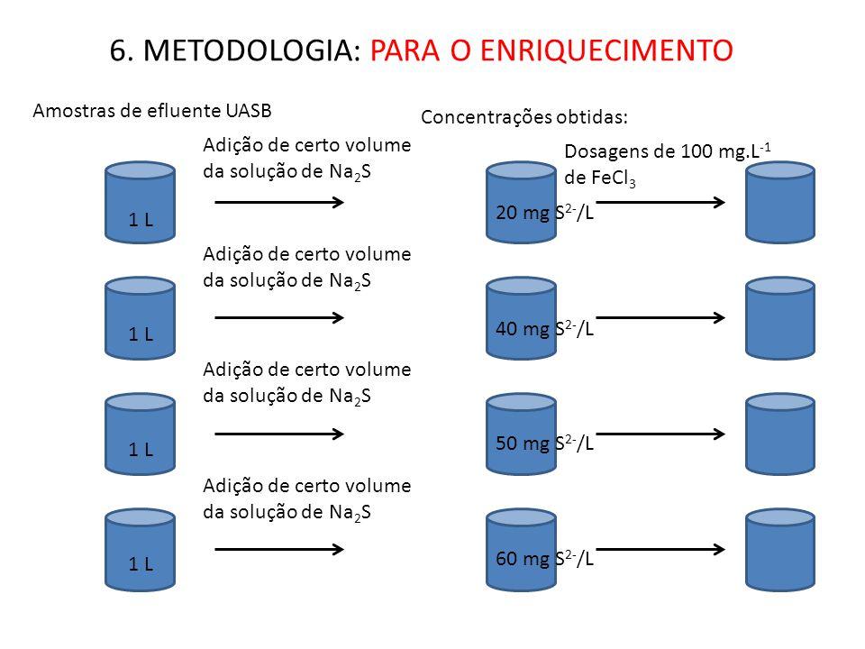 6. METODOLOGIA: PARA O ENRIQUECIMENTO 1 L Amostras de efluente UASB Adição de certo volume da solução de Na 2 S Concentrações obtidas: 20 mg S 2- /L 4