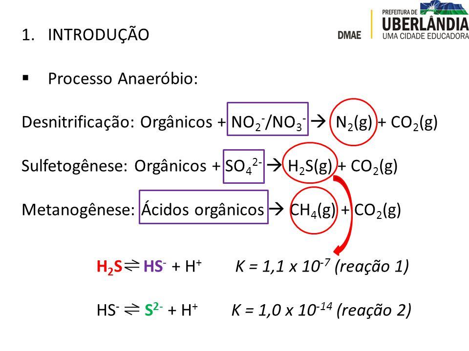 1.INTRODUÇÃO  Processo Anaeróbio: Desnitrificação: Orgânicos + NO 2 - /NO 3 -  N 2 (g) + CO 2 (g) Sulfetogênese: Orgânicos + SO 4 2-  H 2 S(g) + CO