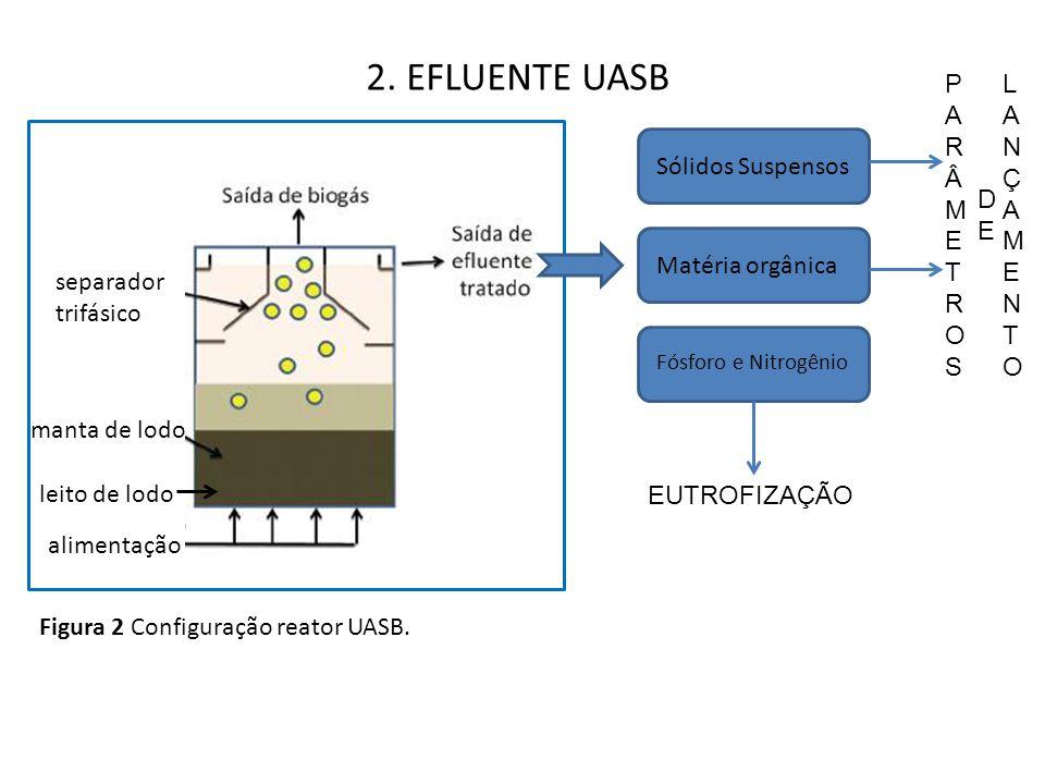 2. EFLUENTE UASB separador trifásico manta de lodo leito de lodo alimentação Sólidos Suspensos Matéria orgânica Fósforo e Nitrogênio EUTROFIZAÇÃO PARÂ