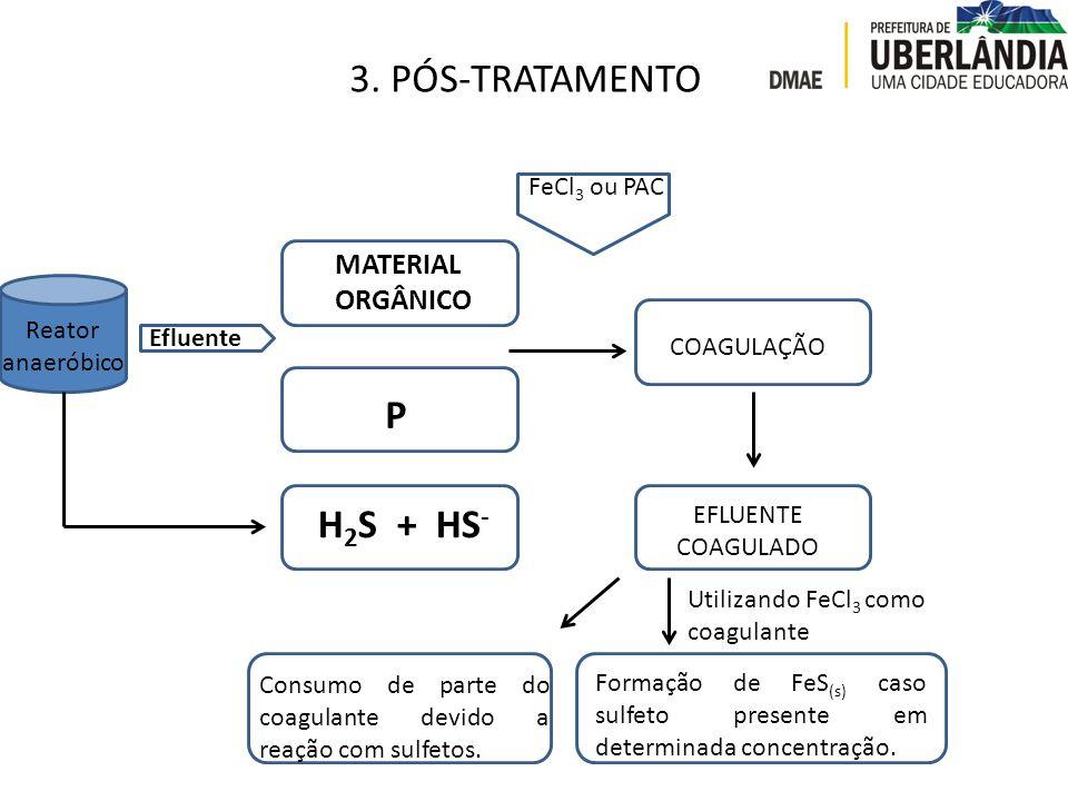 3. PÓS-TRATAMENTO MATERIAL ORGÂNICO P FeCl 3 ou PAC COAGULAÇÃO Reator anaeróbico Efluente H 2 S + HS - EFLUENTE COAGULADO Formação de FeS (s) caso sul