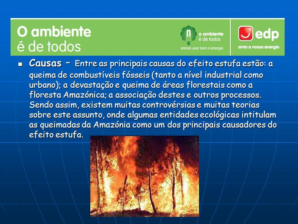 Causas - Entre as principais causas do efeito estufa estão: a queima de combustíveis fósseis (tanto a nível industrial como urbano); a devastação e qu