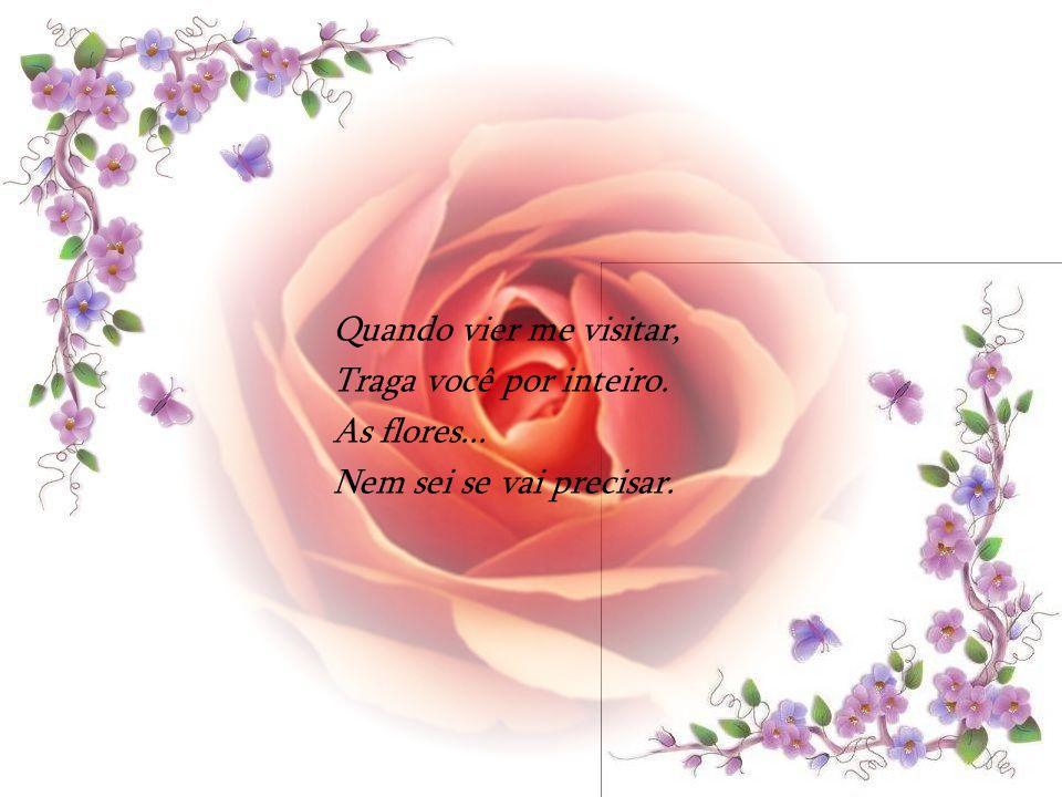 Quando vier me visitar, Traga você por inteiro. As flores... Nem sei se vai precisar.