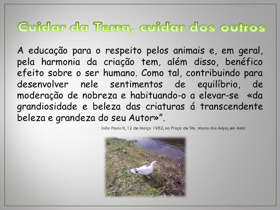 A educação para o respeito pelos animais e, em geral, pela harmonia da criação tem, além disso, benéfico efeito sobre o ser humano.