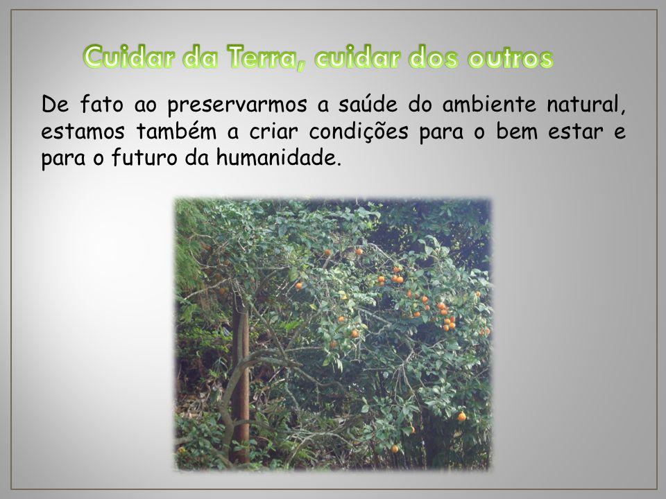 De fato ao preservarmos a saúde do ambiente natural, estamos também a criar condições para o bem estar e para o futuro da humanidade.