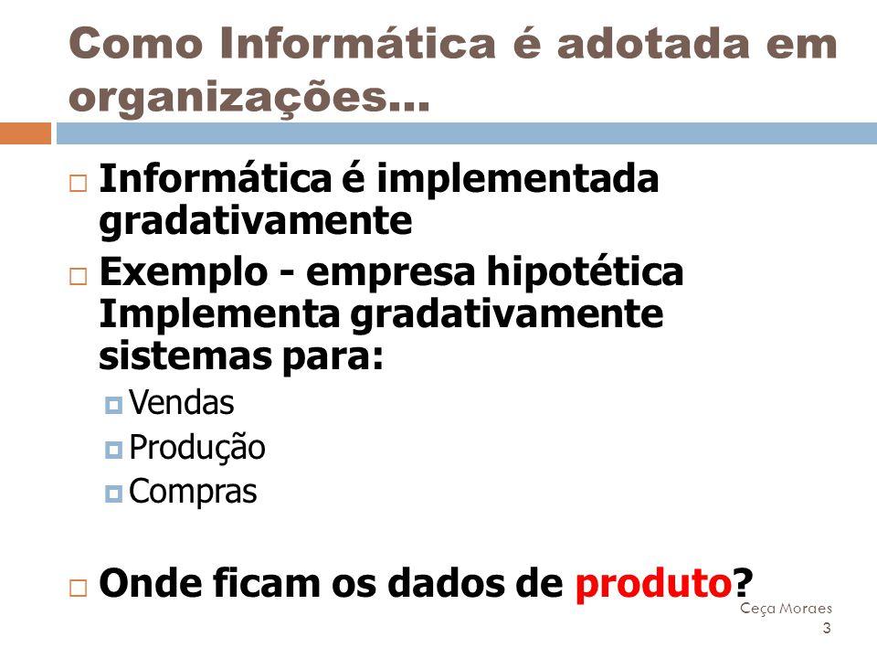 Ceça Moraes 3 Como Informática é adotada em organizações...  Informática é implementada gradativamente  Exemplo - empresa hipotética Implementa grad