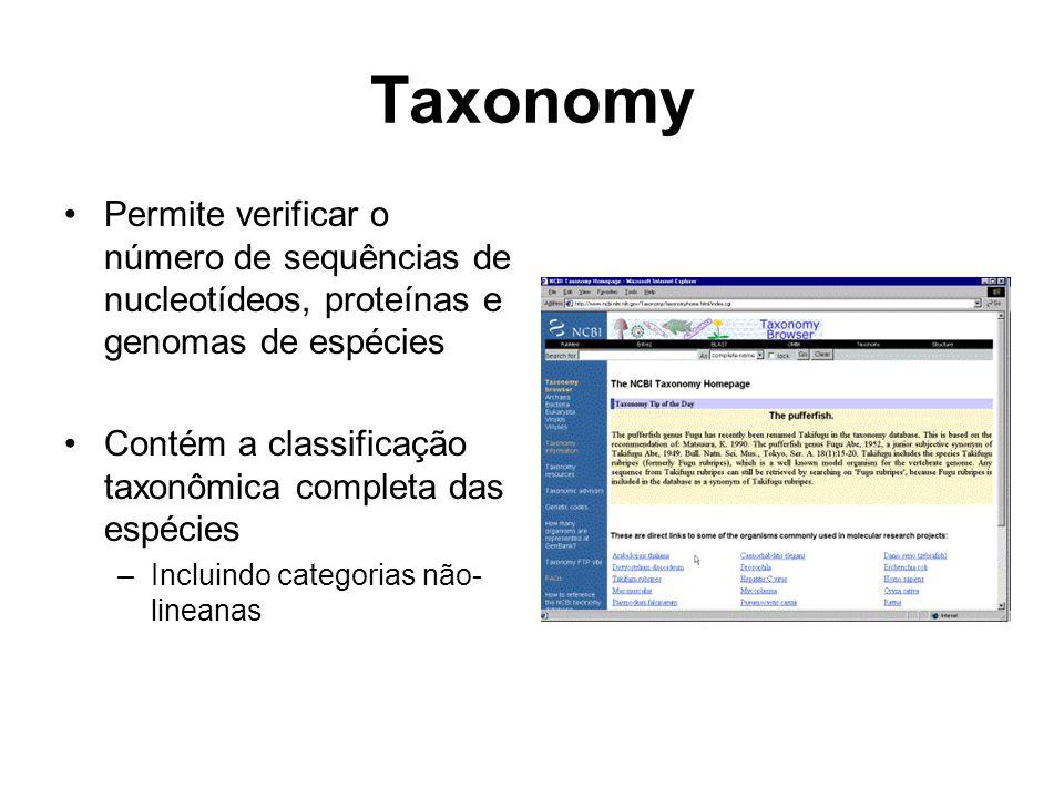 Taxonomy Permite verificar o número de sequências de nucleotídeos, proteínas e genomas de espécies Contém a classificação taxonômica completa das espé