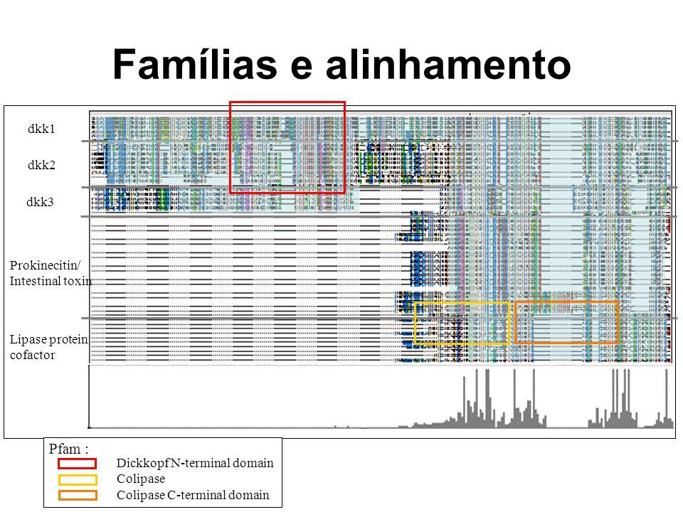 Famílias e alinhamento dkk1 dkk3 Prokinecitin/ Intestinal toxin Lipase protein cofactor Dickkopf N-terminal domain Colipase Colipase C-terminal domain