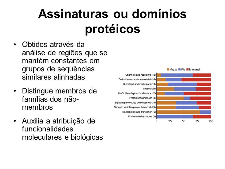 Assinaturas ou domínios protéicos Obtidos através da análise de regiões que se mantém constantes em grupos de sequências similares alinhadas Distingue