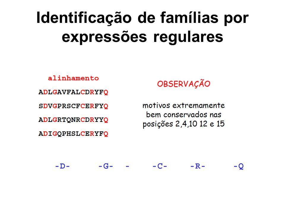 Identificação de famílias por expressões regulares