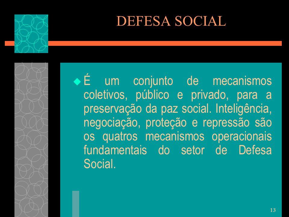 13 DEFESA SOCIAL  É um conjunto de mecanismos coletivos, público e privado, para a preservação da paz social. Inteligência, negociação, proteção e re