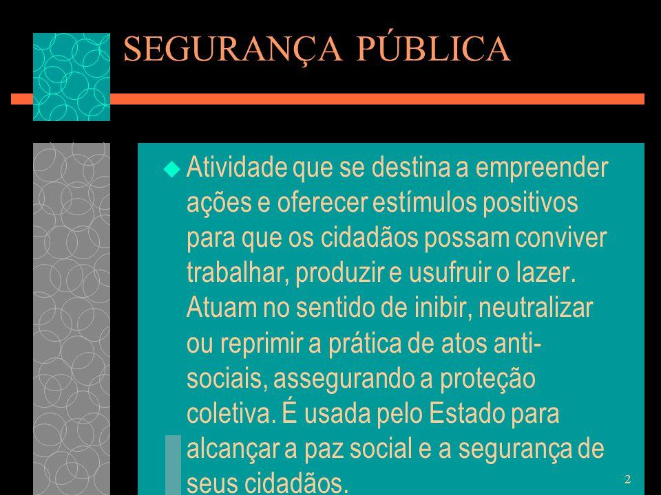 13 DEFESA SOCIAL  É um conjunto de mecanismos coletivos, público e privado, para a preservação da paz social.