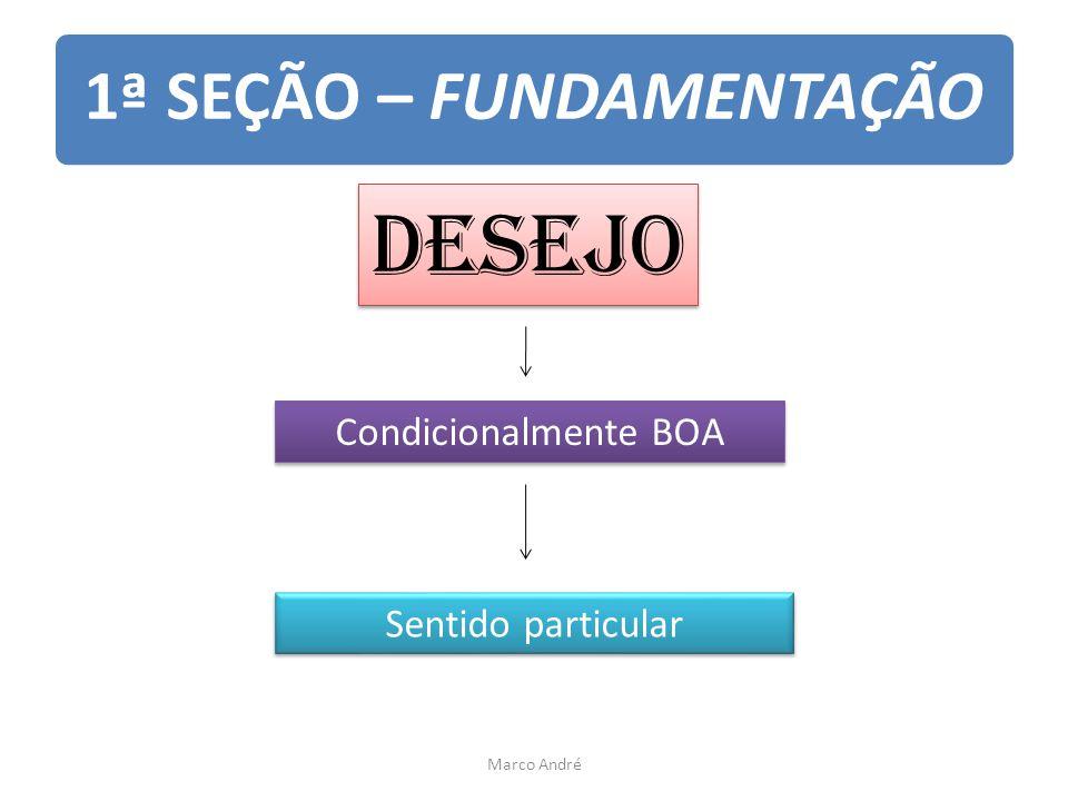 1ª SEÇÃO – FUNDAMENTAÇÃO Desejo Condicionalmente BOA Sentido particular Marco André
