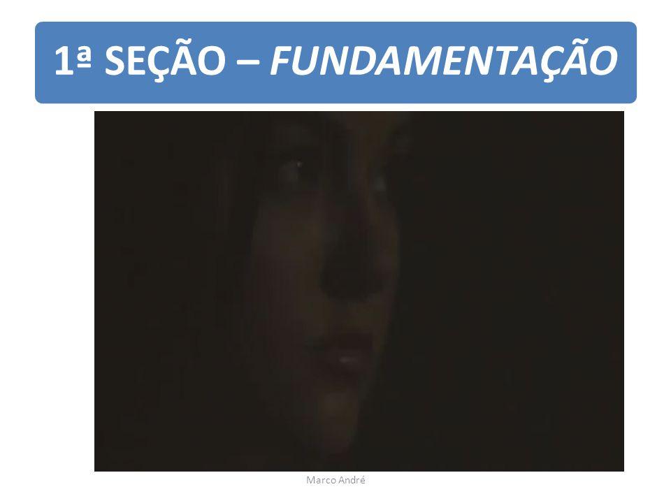 1ª SEÇÃO – FUNDAMENTAÇÃO Marco André
