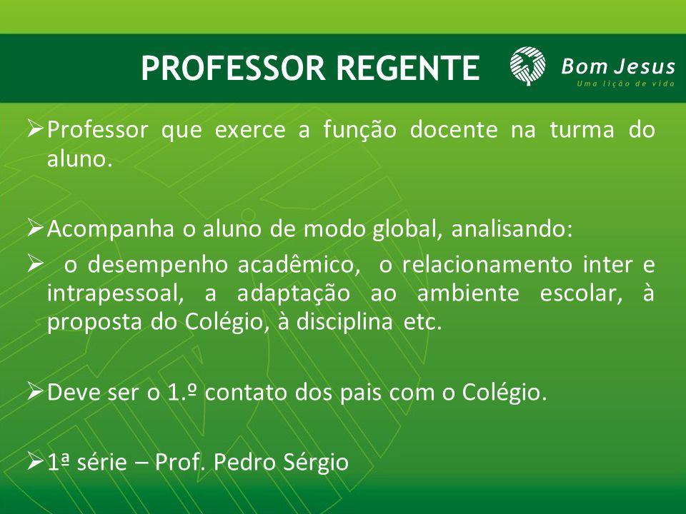 PROFESSOR REGENTE  Professor que exerce a função docente na turma do aluno.  Acompanha o aluno de modo global, analisando:  o desempenho acadêmico,