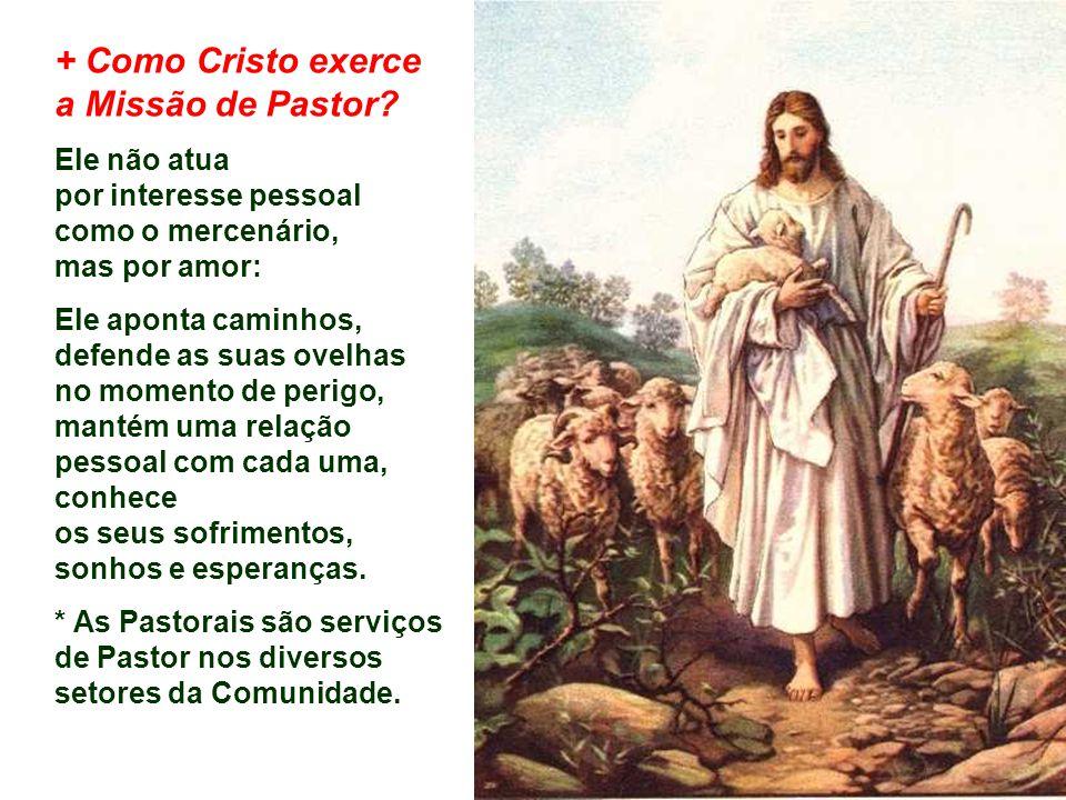- São também pessoas que receberam de Deus e da Igreja a missão de presidir e animar, em nossas comunidades cristãs, apesar das suas limitações.
