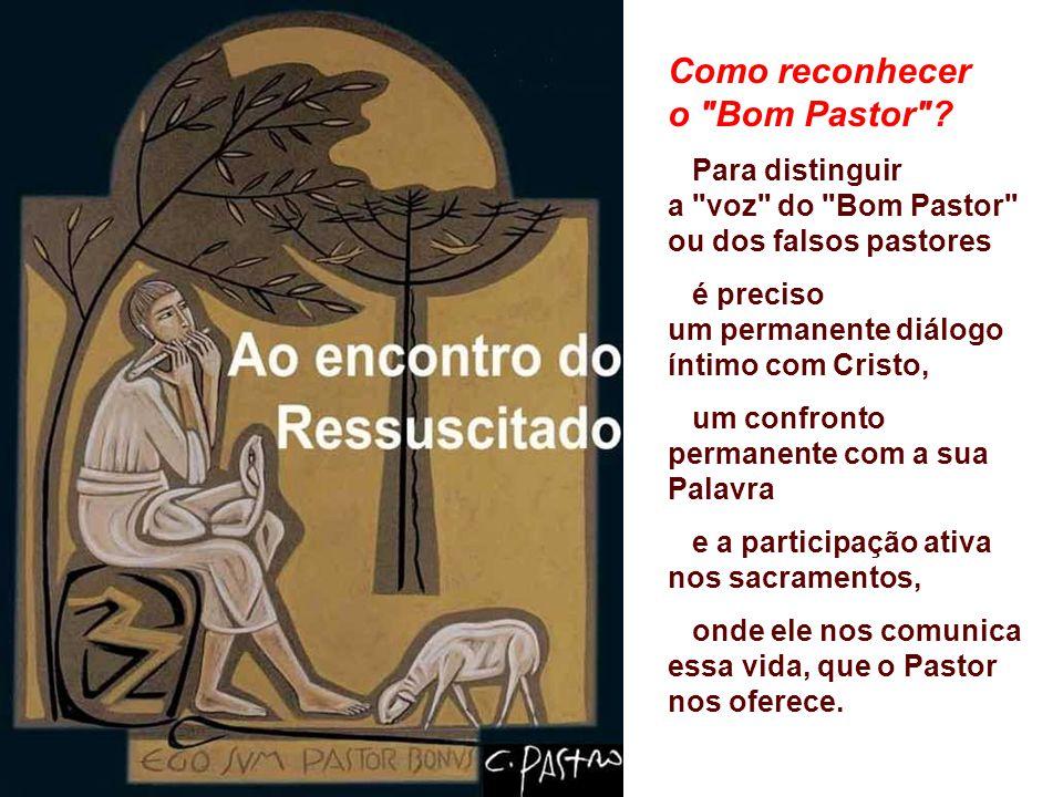 + Como Cristo exerce a Missão de Pastor? Ele não atua por interesse pessoal como o mercenário, mas por amor: Ele aponta caminhos, defende as suas ovel
