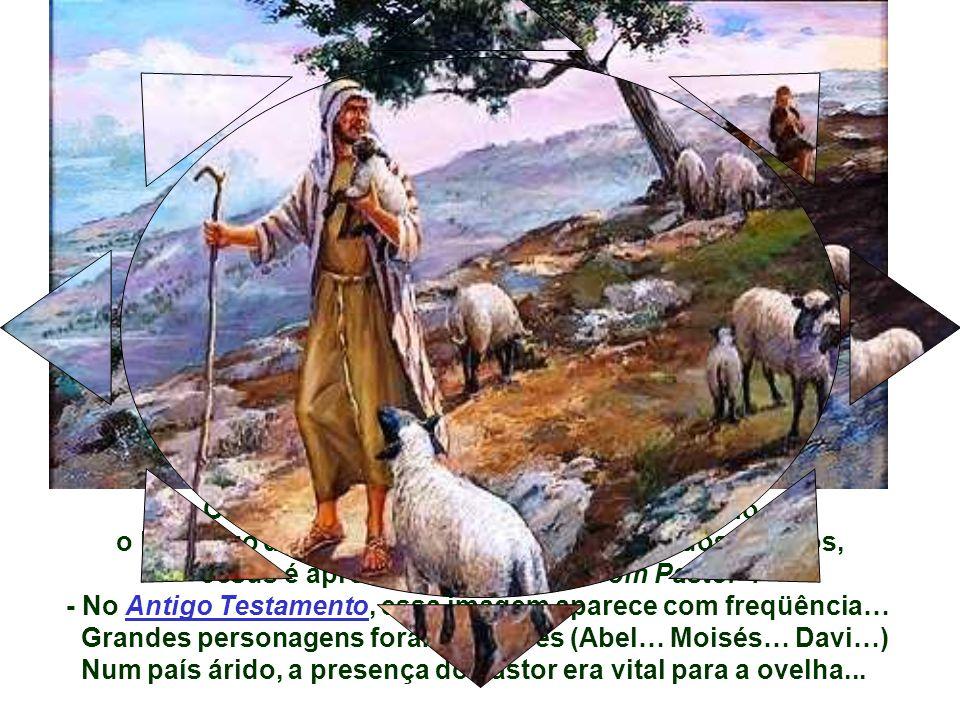 Como reconhecer o Bom Pastor .
