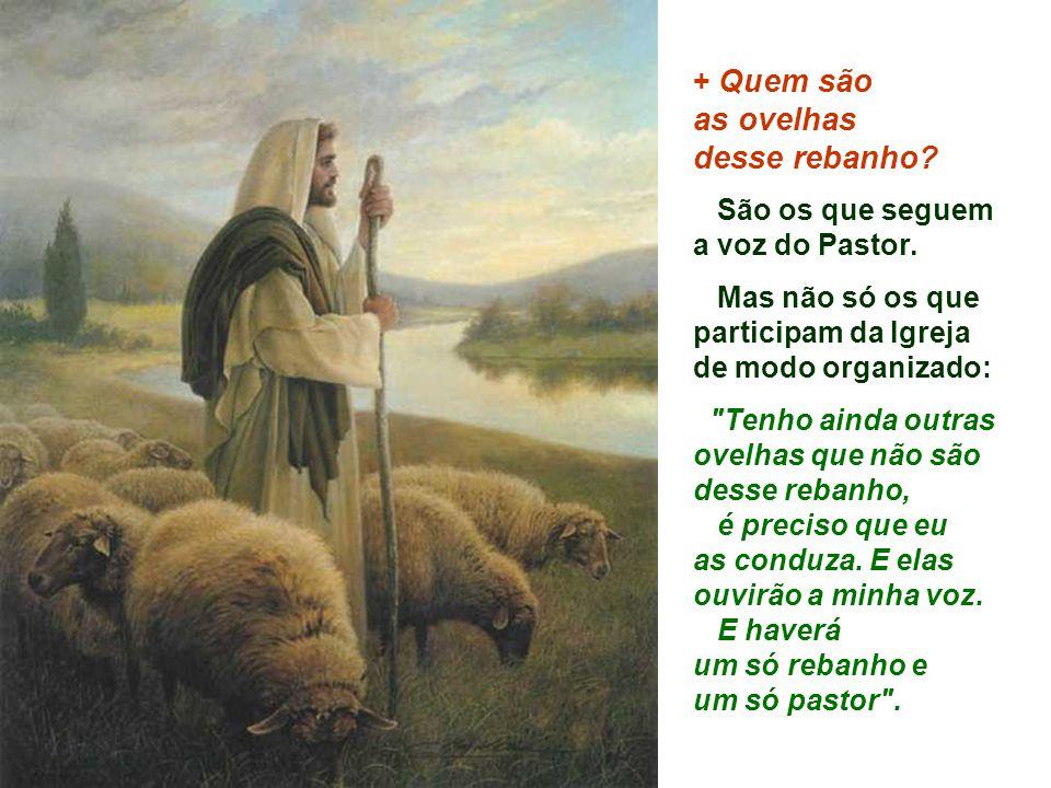 + Quem são as ovelhas desse rebanho.São os que seguem a voz do Pastor.