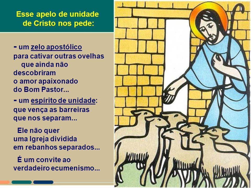 + Quem são as ovelhas desse rebanho? São os que seguem a voz do Pastor. Mas não só os que participam da Igreja de modo organizado: