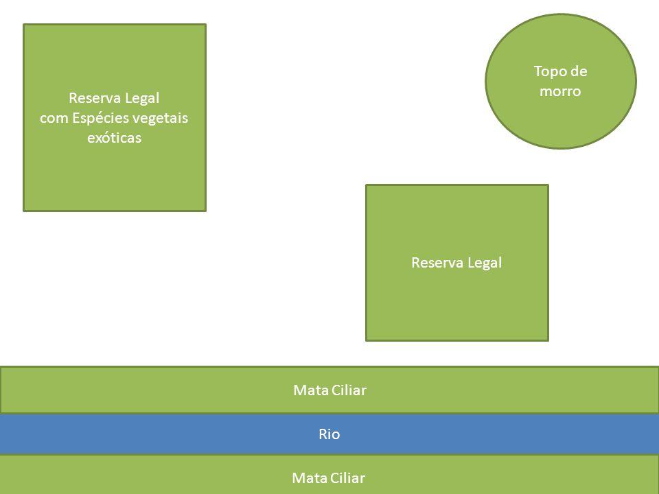 AMBIENTE - Umidade - Temperatura - Disponibilidade de Alimentos COBRA Ambiente Úmido Temperatura Amena Alimenta-se de Roedores