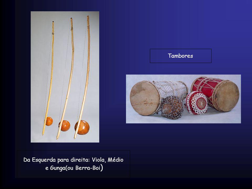 Da Esquerda para direita: Viola, Médio e Gunga(ou Berra-Boi ) Tambores