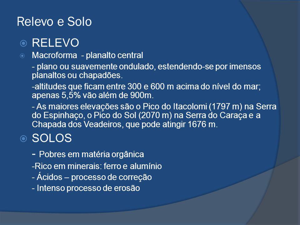 Relevo e Solo  RELEVO  Macroforma - planalto central - plano ou suavemente ondulado, estendendo-se por imensos planaltos ou chapadões. -altitudes qu